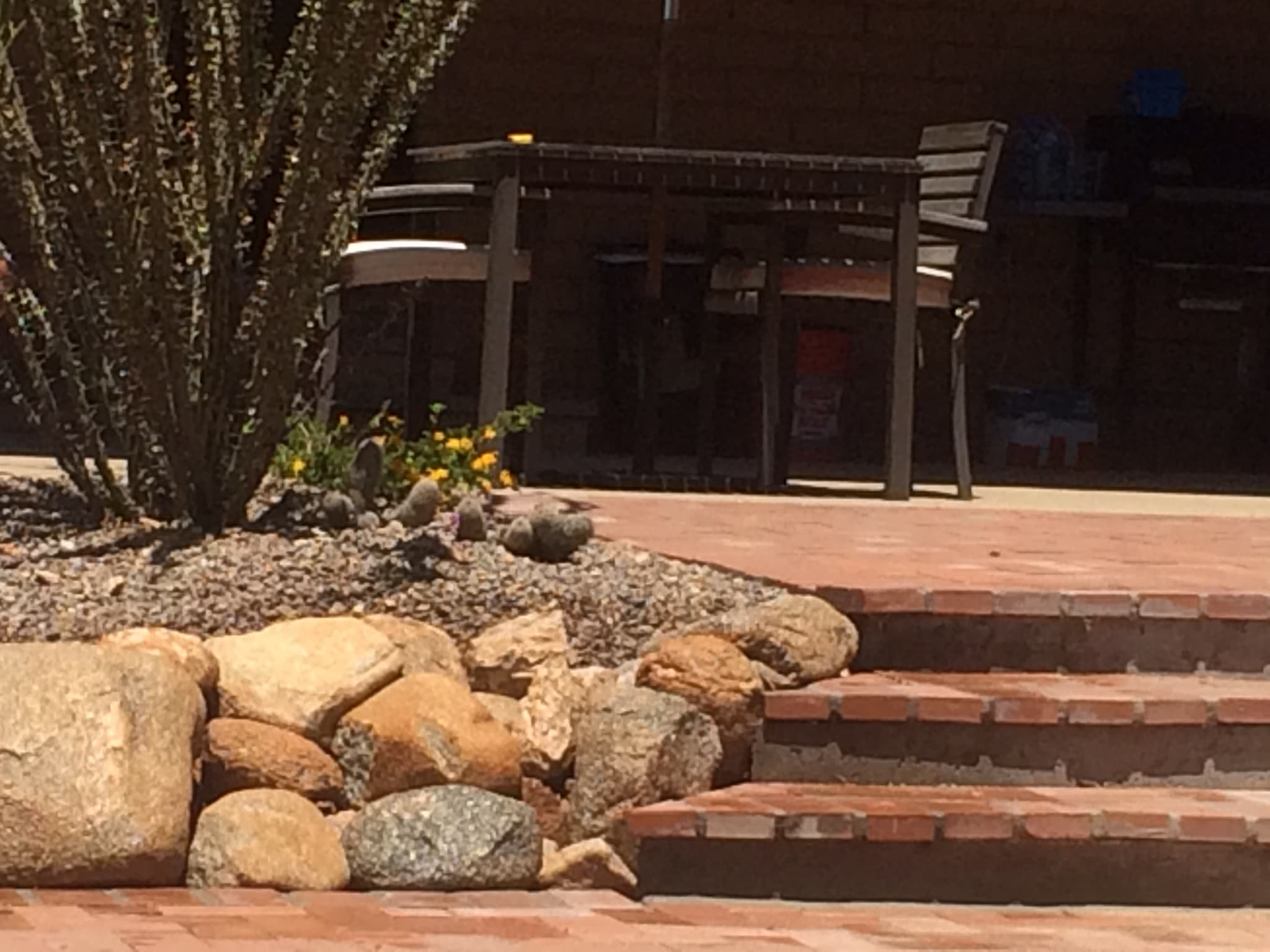 Landscaping Contractor in Tucson - Arizona Landshapes LLC