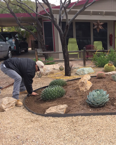 We provide Tucson, AZ and all surrounding areas with general tree & shrub  pruning, complete irrigation services, disease and pest identification, ... - Tucson Landscaping Company - Arizona Landshapes LLC - Expert Landscaper